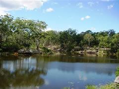 Lake_Parramatta_1.jpg